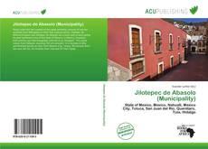 Bookcover of Jilotepec de Abasolo (Municipality)