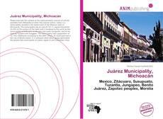 Bookcover of Juárez Municipality, Michoacán