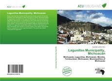 Bookcover of Lagunillas Municipality, Michoacán