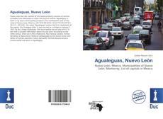 Bookcover of Agualeguas, Nuevo León
