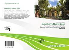 Bookcover of Aramberri, Nuevo León