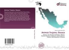Borítókép a  Animas Trujano, Oaxaca - hoz