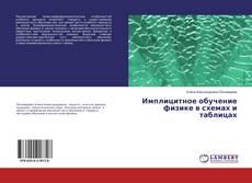 Имплицитное обучение физике в схемах и таблицах的封面