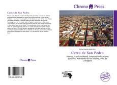 Buchcover von Cerro de San Pedro