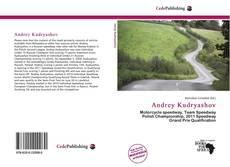 Andrey Kudryashov kitap kapağı
