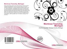 Bookcover of Montrose Township, Michigan