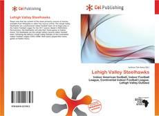 Capa do livro de Lehigh Valley Steelhawks