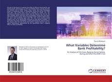 Borítókép a  What Variables Determine Bank Profitability? - hoz