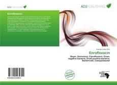 Bookcover of Enrofloxacin