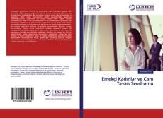 Bookcover of Emekçi Kadınlar ve Cam Tavan Sendromu