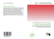 Buchcover von TEAMS (cable system)