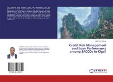 Copertina di Credit Risk Management and Loan Performance among SACCOs in Kigali