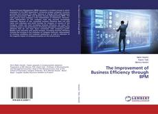 Copertina di The Improvement of Business Efficiency through BPM