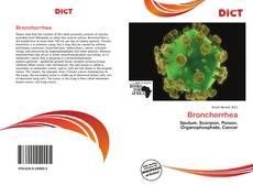 Copertina di Bronchorrhea