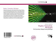 Bookcover of Bagley Township, Michigan