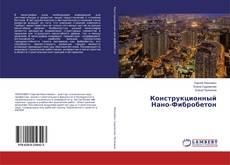 Конструкционный Нано-Фибробетон kitap kapağı