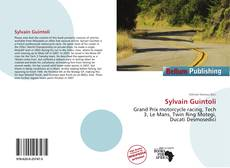 Bookcover of Sylvain Guintoli