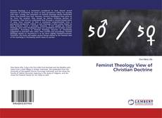 Обложка Feminst Theology View of Christian Doctrine