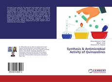 Synthesis & Antimicrobial Activity of Quinazolines的封面