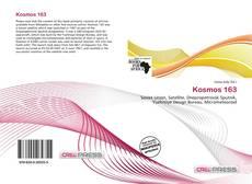 Bookcover of Kosmos 163
