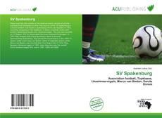 SV Spakenburg kitap kapağı
