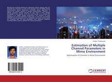 Bookcover of Estimation of Multiple Channel Parameters in Mimo Environment