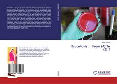 Bookcover of Brucellosis ... From (A) To (Z)!!