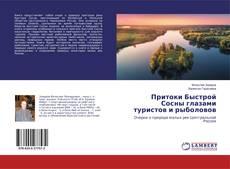 Притоки Быстрой Сосны глазами туристов и рыболовов kitap kapağı