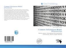 Bookcover of Common Information Model (Electricity)