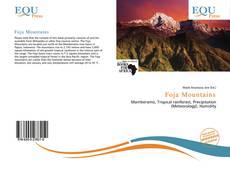 Обложка Foja Mountains