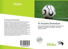 Обложка FC Knyazha Shchaslyve