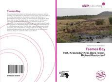 Tsemes Bay kitap kapağı