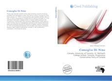 Bookcover of Consiglio Di Nino