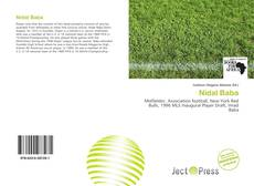 Bookcover of Nidal Baba