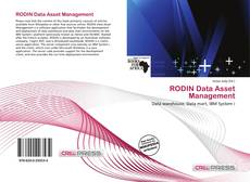 RODIN Data Asset Management的封面