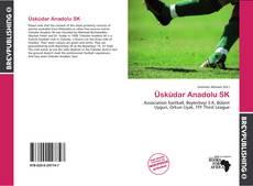 Üsküdar Anadolu SK的封面