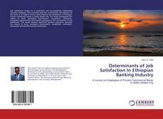 Обложка Determinants of Job Satisfaction In Ethiopian Banking Industry