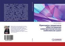 Borítókép a  Принципы защитного обесточивания электротехнических комплексов шахт - hoz