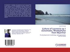 Bookcover of Culture of Laurencia sp.1 (Ceramiales, Rhodophyta) from Myanmar