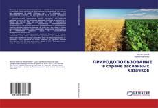 Buchcover von ПРИРОДОПОЛЬЗОВАНИЕ в стране засланных казачков