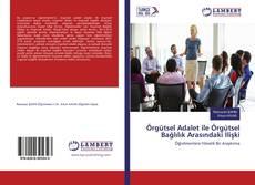 Bookcover of Örgütsel Adalet ile Örgütsel Bağlılık Arasındaki İlişki