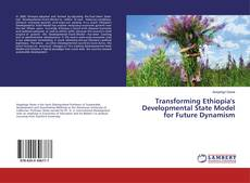 Bookcover of Transforming Ethiopia's Developmental State Model for Future Dynamism