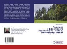 Bookcover of Практика эффективного менеджмента. Модель системы управления
