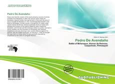 Buchcover von Pedro De Avendaño