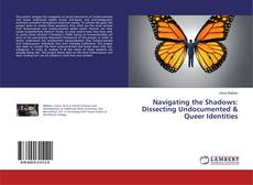 Navigating the Shadows: Dissecting Undocumented & Queer Identities kitap kapağı