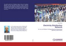 Bookcover of Electricity Distribution Network
