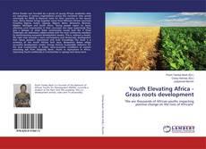 Buchcover von Youth Elevating Africa - Grass roots development