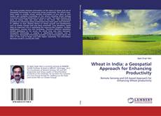 Buchcover von Wheat in India: a Geospatial Approach for Enhancing Productivity