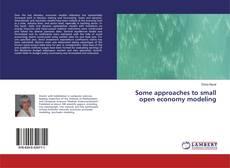 Capa do livro de Some approaches to small open economy modeling