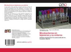 Bookcover of Micobacterias en tejoneras y su entorno